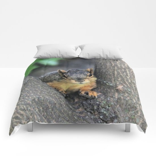 Nooks and chatters Comforters