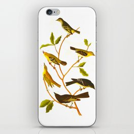 Little Tyrant Flycatcher, Small-headed Flycatcher, Blue Mountain Warbler, Bartram's Vireo, Short-leg iPhone Skin