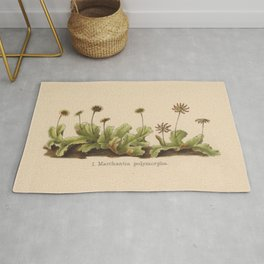 Antique Moss Lithograph Rug