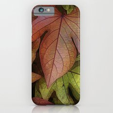 leaves at rest iPhone 6s Slim Case