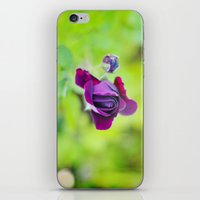 cocktail iPhone & iPod Skins featuring Cocktail by IngeBorgaPhotoArt