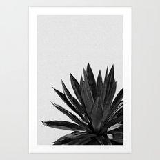 Agave Cactus Black & White Art Print