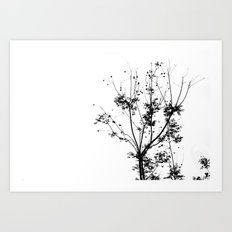The Grow. Art Print