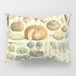 Vegetable Identification Chart Pillow Sham