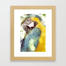 Magical Parrot - Guacamaya Variopinta - Magical Realism Framed Art Print