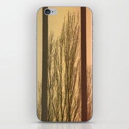 Convergent iPhone Skin