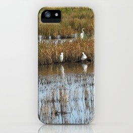 White Egrets Resting and Grooming iPhone Case