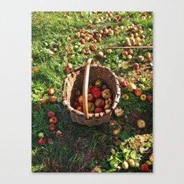 Basket o' Apples Canvas Print