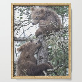 Brown Bear Cubs Serving Tray