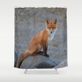 Fox20151215 Shower Curtain