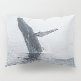 Burst Pillow Sham
