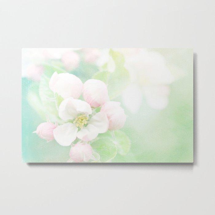 Apple Blossom Pink Metal Print