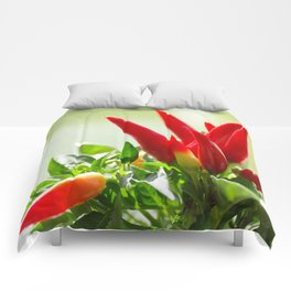 Chili peppers on the vine Comforters