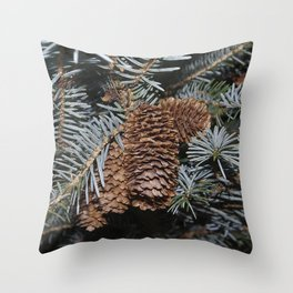 Spruce Cones And Branches Throw Pillow