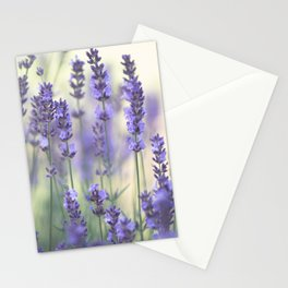 Summer Lavender Stationery Cards