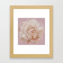 DUSKY ROSE Framed Art Print