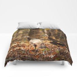 Wild Turkey Comforters