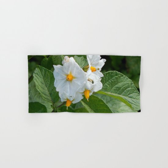 Potato Plant Flowers Hand & Bath Towel