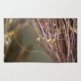 Dry flowers Rug