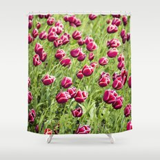 Tulips will remember  Shower Curtain