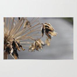 Spikey Flower Rug