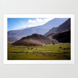 """""""Cordillera de los Andes"""" Art Print"""