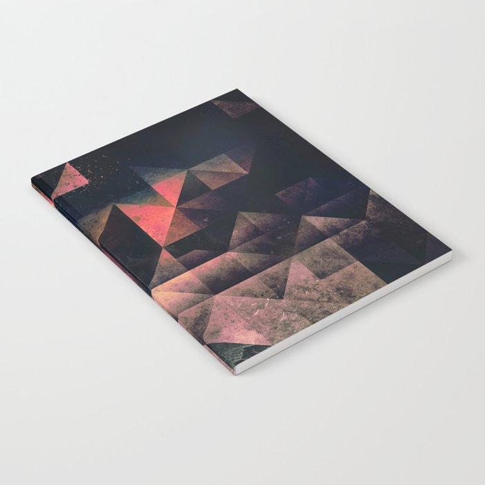 nyxt chyptyr Notebook