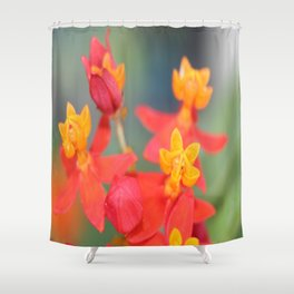 Succulent Red and Yellow Flower Shower Curtain