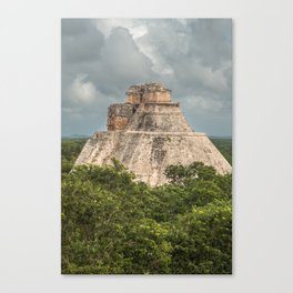Rising From The Jungle Canvas Print