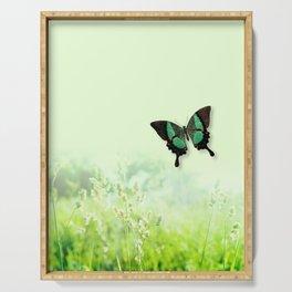 Green Butterfly, Wildflower Meadow, Summer Field Serving Tray