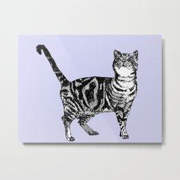 Tabby Cat on Lavender Metal Print