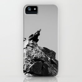 Raven Calling iPhone Case
