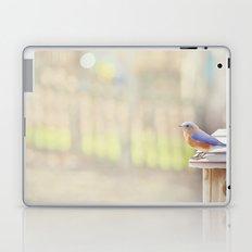 Bluebird Morning Laptop & iPad Skin