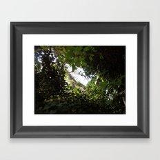 the peer Framed Art Print