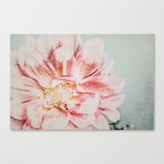 Pink Blush Flower Canvas Print