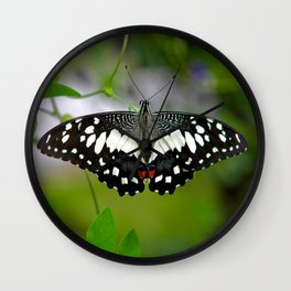 Butterfly Large Wall Clock