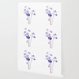 purple Cape primrose flowers watercolor  Wallpaper
