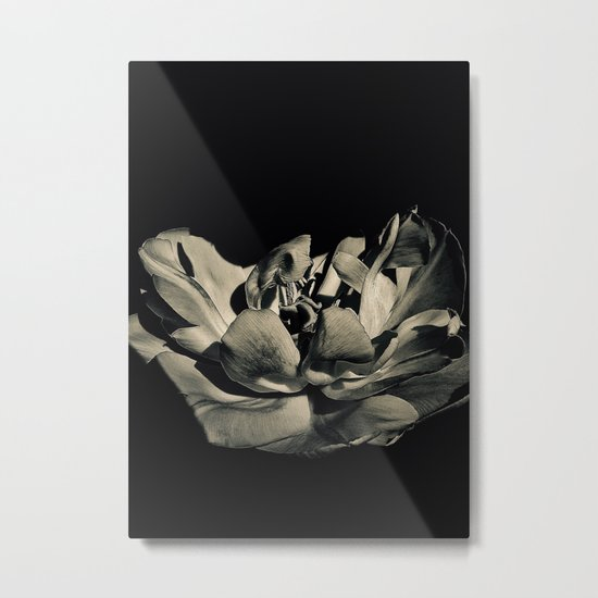 Floating In Darkness...Our Essence Unburdened Metal Print