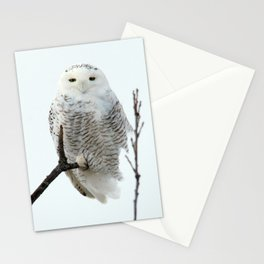 Snowy in the Wind (Snowy Owl 2) Stationery Cards