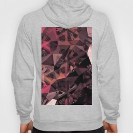 Lavender Red Brown Abstract Geometric Triangle Polygon Seedpod  Illustration Hoody