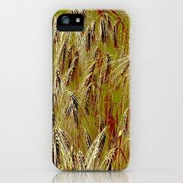 Field of barley II iPhone Case