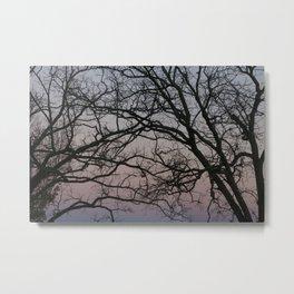 Intertwined Metal Print