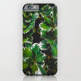 closeup green leaves plant garden texture background iPhone Case