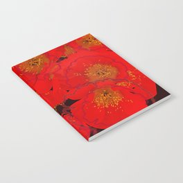 Abstract poppies 2 Notebook