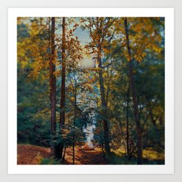 Creekside summer Art Print