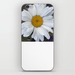 Just a Daisy iPhone Skin