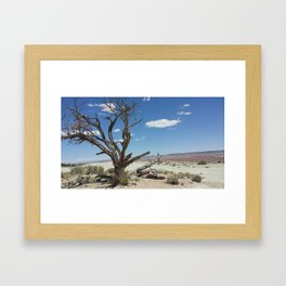 Desert Colors Framed Art Print