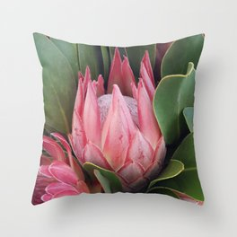 Kamila's Protea Throw Pillow