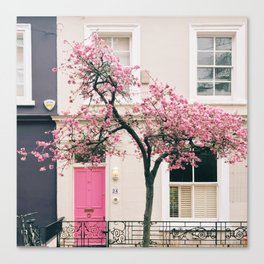 British Blossoms, London Canvas Print