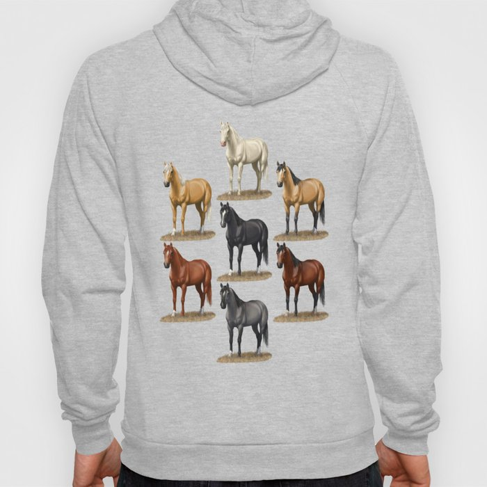 Horse Common Solid Coat Colors Chart Hoody